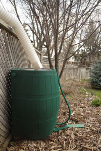 Make Your Own Rain Barrel | ThriftyFun